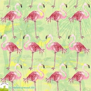 Kimberley_Wilson_Beginner_Flamingogo
